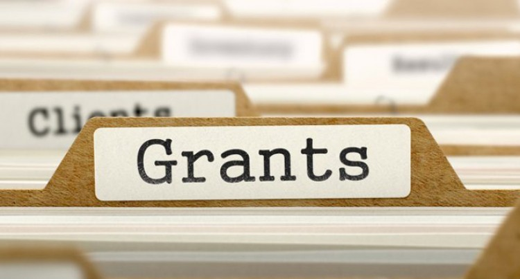 $50 Million Grant Assists 372 Grassroots Projects So Far
