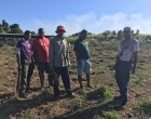 Impact Of Dry Weather Hits Farmers Affects Crops