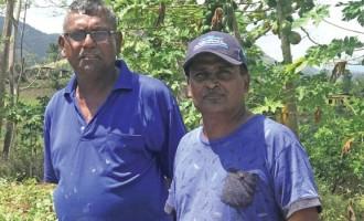Dry Spell Makes North Farmers Pray for Rain
