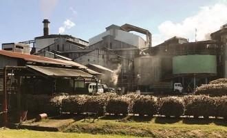 Sugar Mills Record  Improved Performances