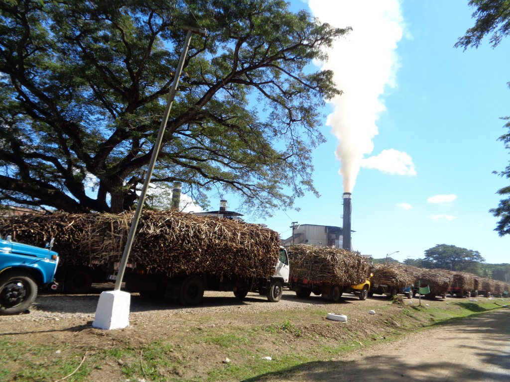 Fiji Sugar Corporation Rarawai Mill