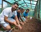 Residents to Get Fresh Veggies After Prasad's Initiative