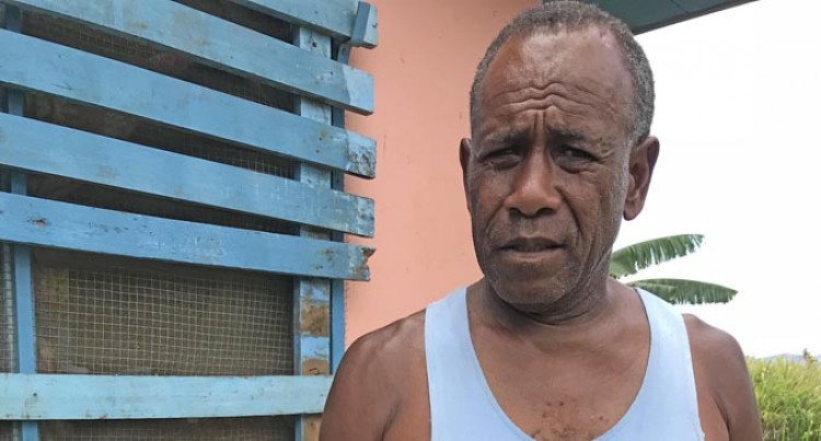 Termites Target Nale's Home