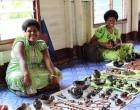 Start A Village Business