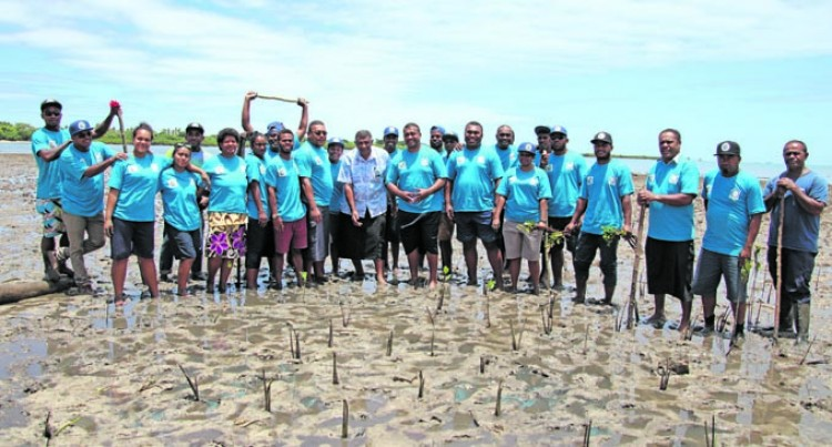 Planting 3,000 Mangrove Seedlings Marks Saweni World Fisheries Day
