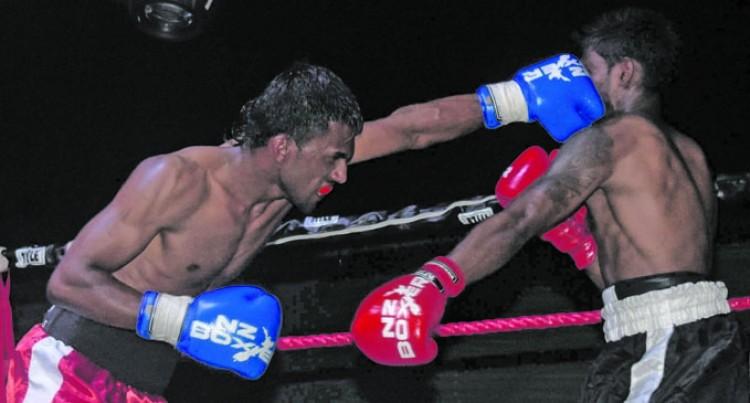 Ranking Boxers Overdue
