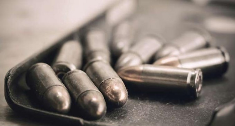 $4000 Fine For Arms, Ammo Possession