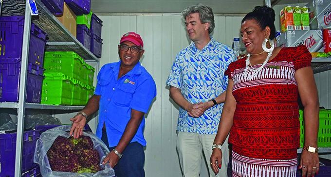 Farmboy Prasad Establishes Name On International Market