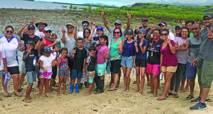 Fiji Airways Staff Plant 3000 Mangrove Plants