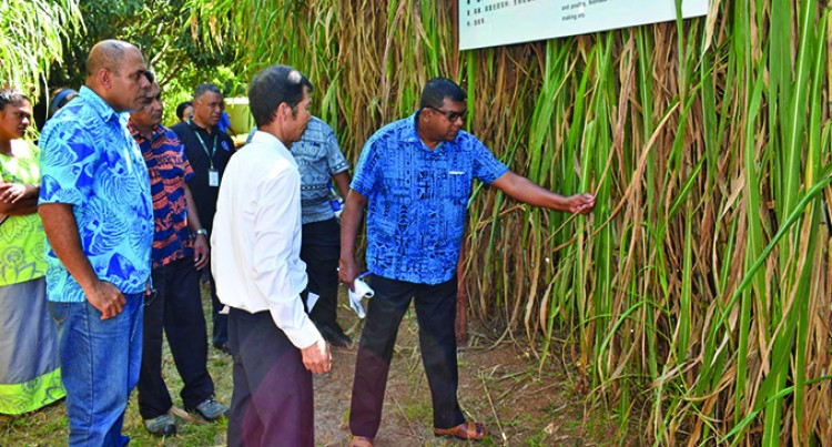 Minister Visits Agriculture Offices