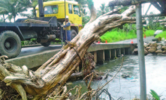 Ministry Takes Quick Action In Clearing Bridge Debris