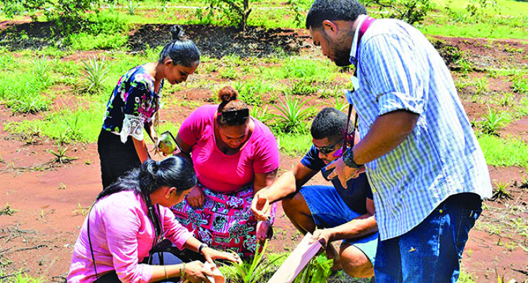 Integrated Approaches Needed To Address Agricultural Vulnerability