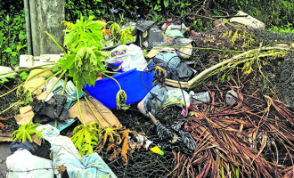 Reddy Calls For Civic Pride, Warns Litter Bugs