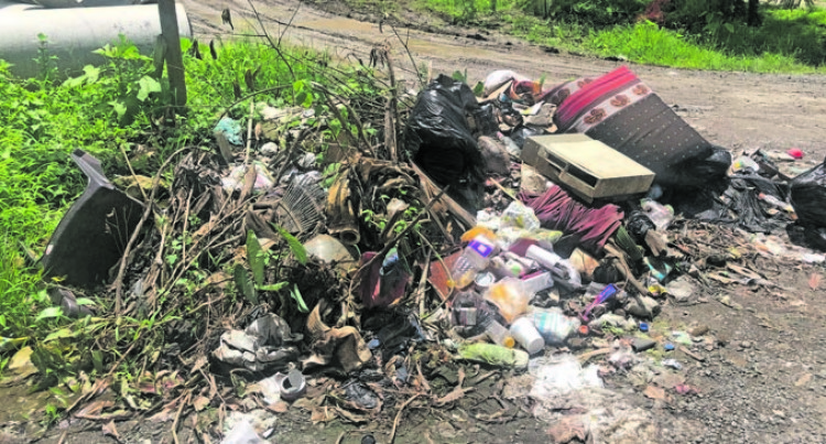 Use Rubbish Bins, Reddy Urges