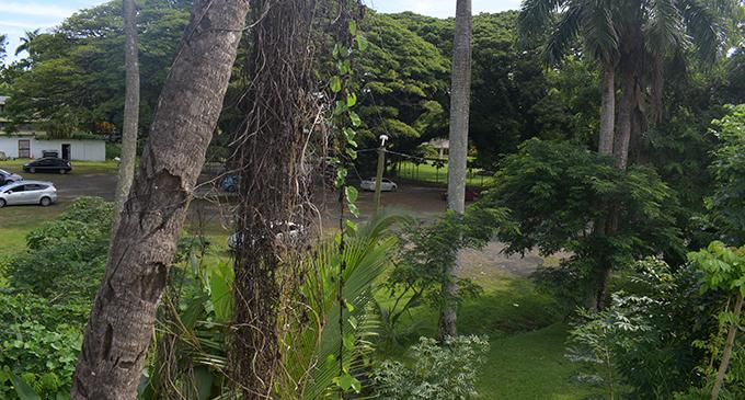 Thurston Gardens.