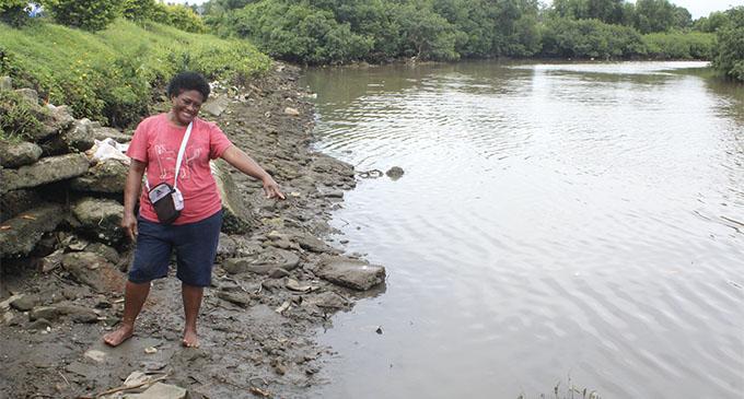 A Nokonoko resident points to where the dead hammerhead baby sharks were found. Photo: Simione Haravanua