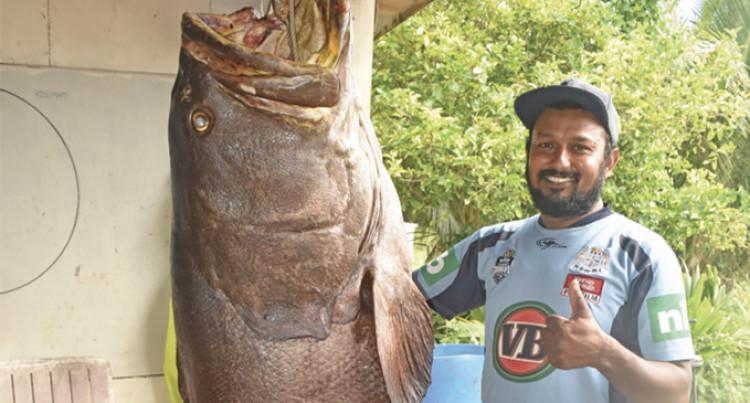 Nadi Fisherman's Second 200 Kilo Catch In 2 Weeks