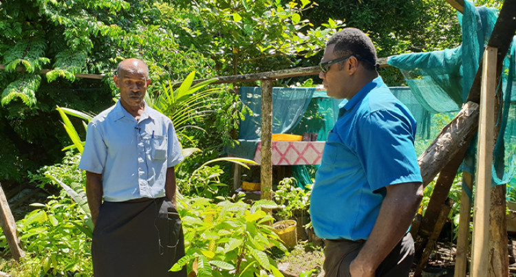 Tailevu Farmer's Cocoa Beans Ranks High In France