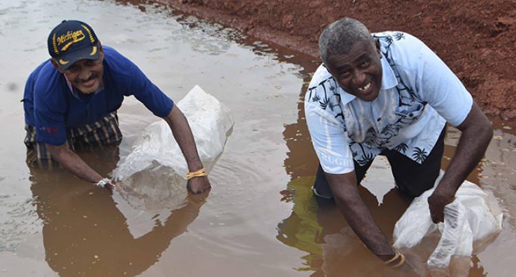 Government Initiative: 5,000 Tilapia For Labasa Fish Farmer
