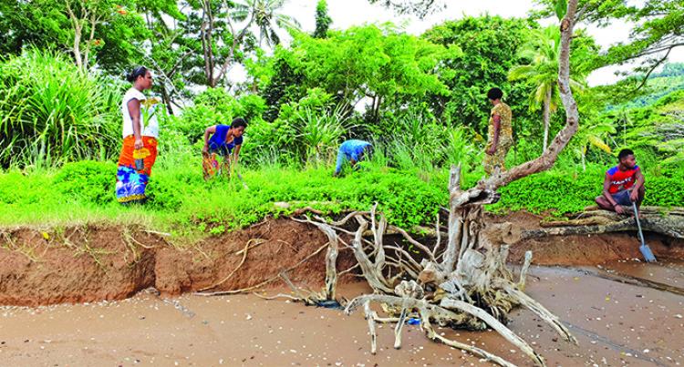 NGO Helps Fix Erosion- Prone Village Foreshore