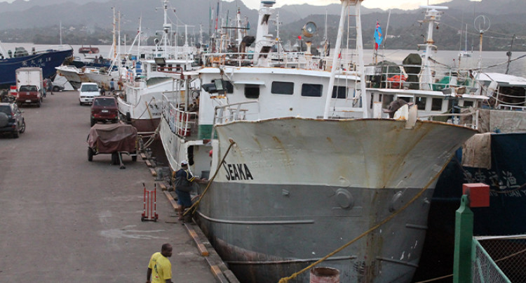 Tuna Industry Brings In $155m, Employs 3800