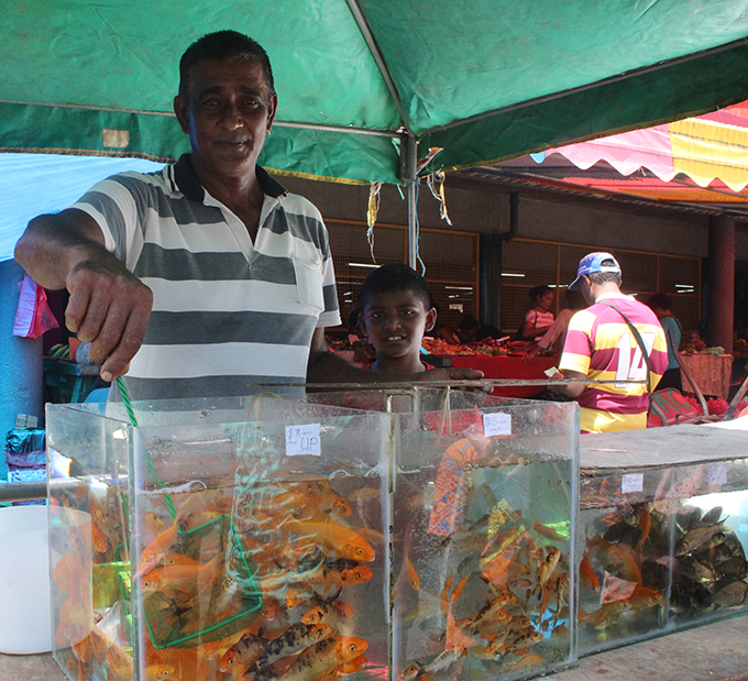 Fish farmer Edwin Prasad with his fish outside the Suva market on March 2,2019.Photo:Simione Haravanua.