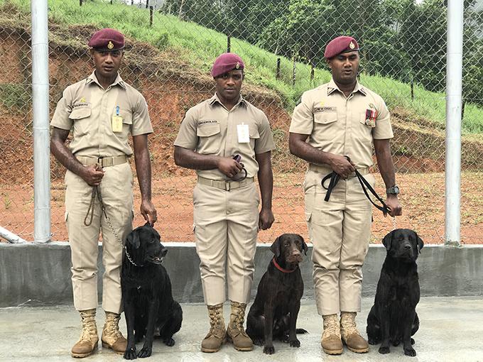 [L-R] Sergeant Sainitiki Naurosau with K9 Dianna, Sergeant Savenaca Drodrolagi with K9 Rocky and Sergeant Maika Vosaca with K9 Gus.