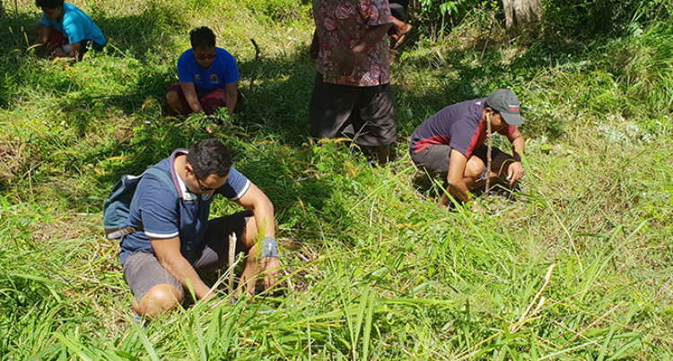 Vatutu Village part of the tree-planting strategy