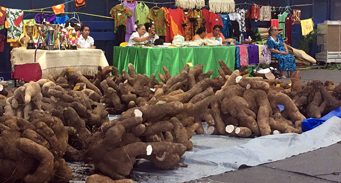 Harvested yam showcased during the Rotuma Day celebrations at the FMF Gymnasium on May 11, 2019.  Photo: Kelera Sovasiga