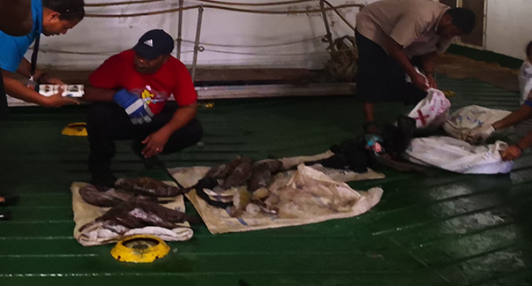 Tip-Off Lead To Confiscation Of Kawakawa, Donu From Shipping Vessel
