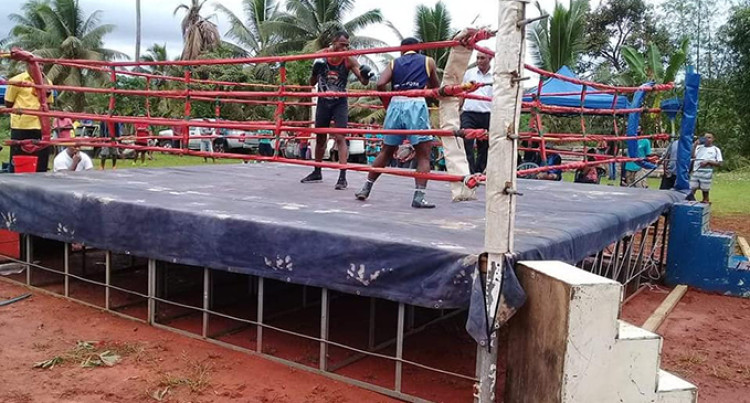 Amateur Boxing Revival Hits North