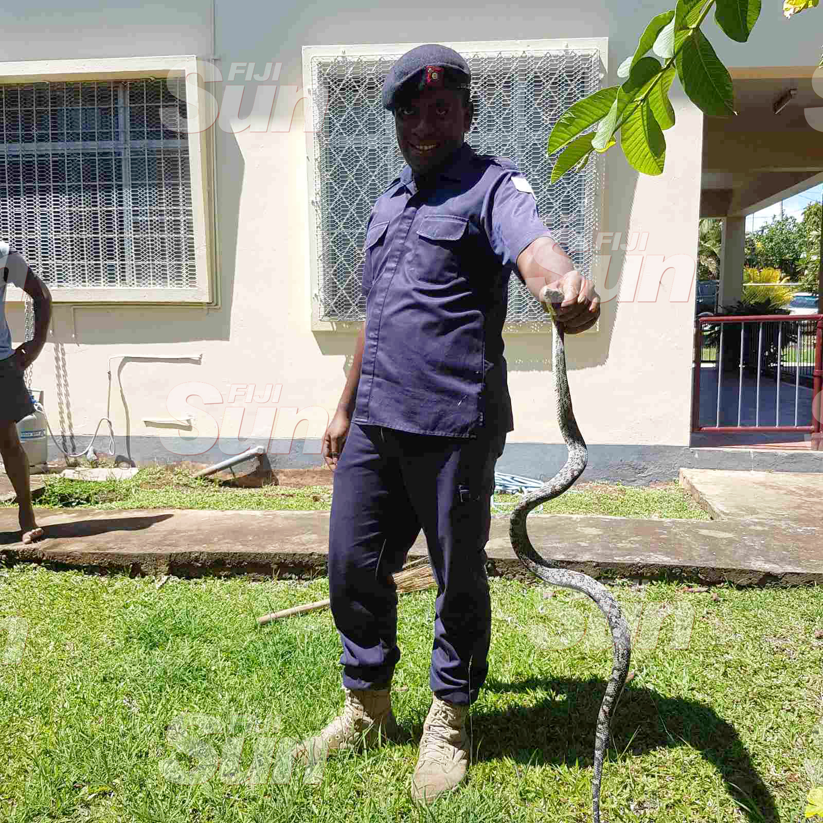 A Police officer holding the snake which was spotted at a home in Simla, Lautoka on October 20, 2019. Photo: Nicolette Chambers