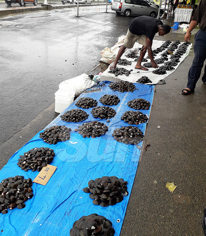 Amoni Liunavuna braves the rain to sell his freshwater mussels at the Suva Market on October 30, 2019.