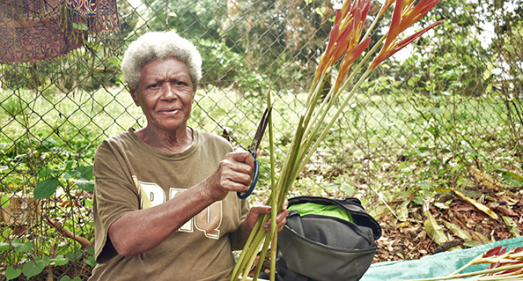 From Tailevu To Lautoka, 63 Year Old Asenaca Provides For Her Family