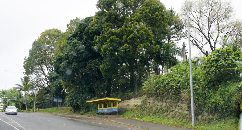 The bus shelter area near Fiji National University Nasinu Campus rear gate is usually dark at night. Photo: Ronald Kumar.