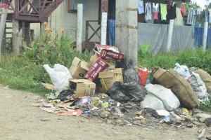 Rubbish dumped at Nawajikuma Settlement at Nawaka in Nadi. Photo: Mereleki Nai