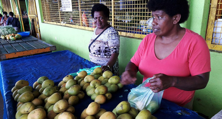Vendor Switches To Mangoes, As Trees Are Laden With Fruits
