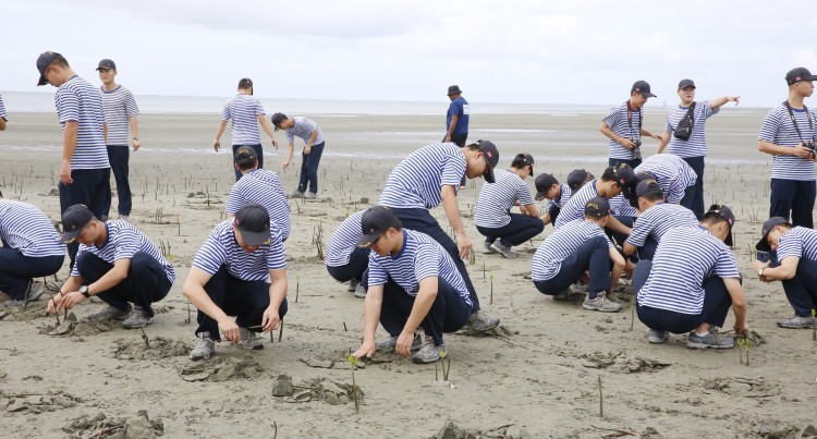 The Chinese Navy Planting Mangrove At The Suva Foreshore