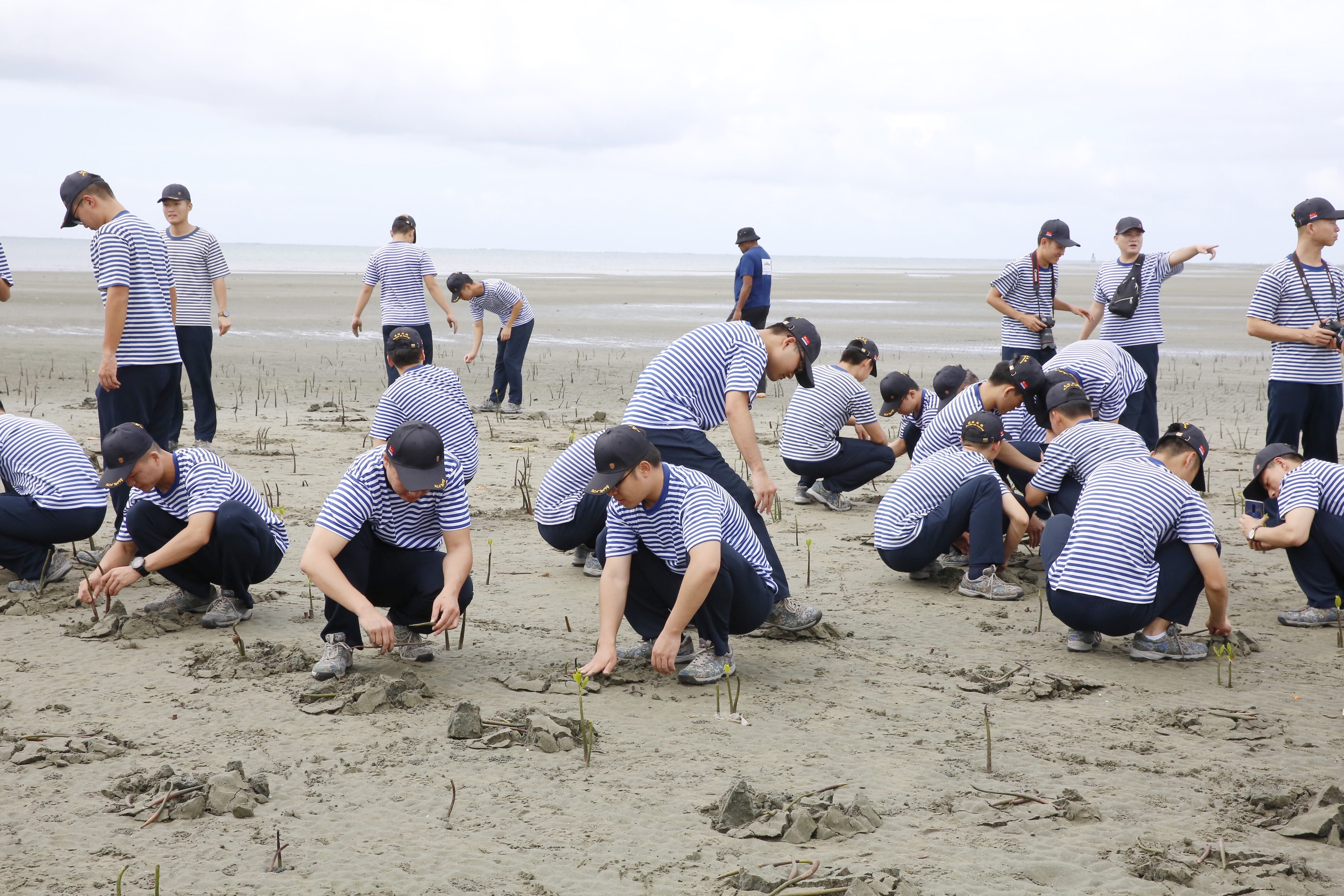 The Chinese Navy during a mangrove planting session at the Suva Foreshore.