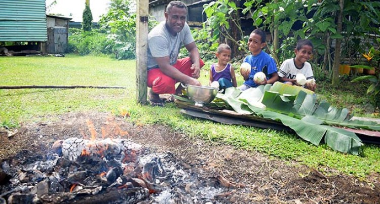 Lovo Pits, Food And Merry-Making  Graces Matokana Village In Lau