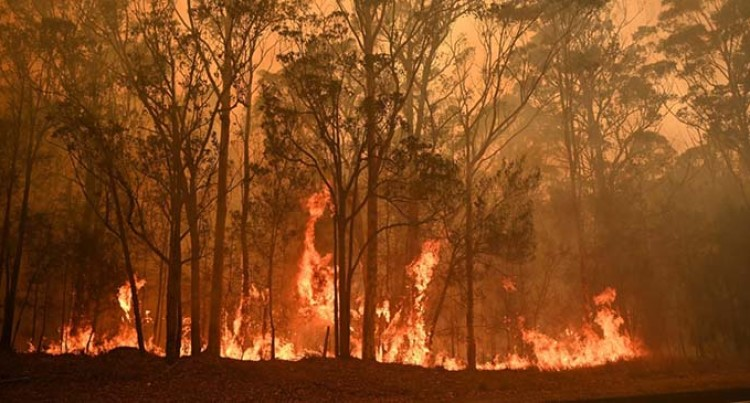 Fijian Troops To Help Fight Australian Bushfires
