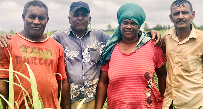 Madan Sen (second from left) with labourers from the village in the Nubu district outside Labasa. Photo:Fiji Sugar Corporation