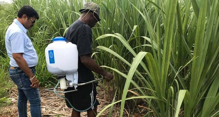 Samisoni Brings Products In To Fiji To Improve Crop Yield