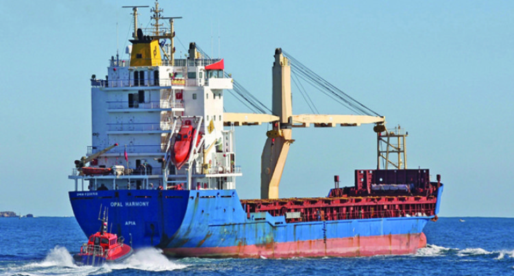Cargo Ship Crews To Be Closely Monitored: Karan