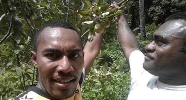 Farmer Bewildered By Apple Tree Bearing Fruit