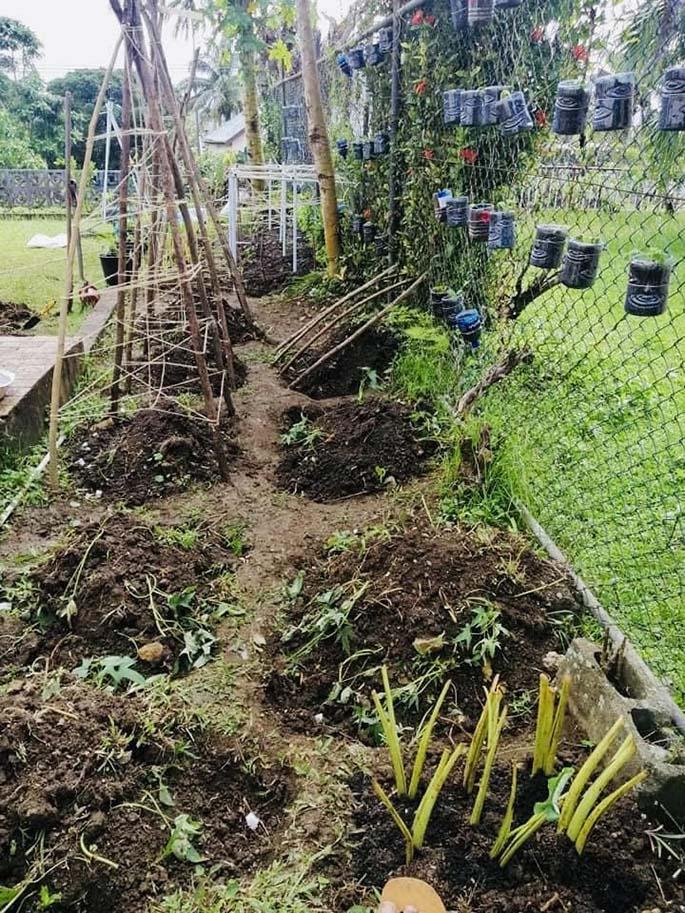 Filimoni Vosarogo's frontyard garden. Photos: Filimoni Vosarogo's Facebook page