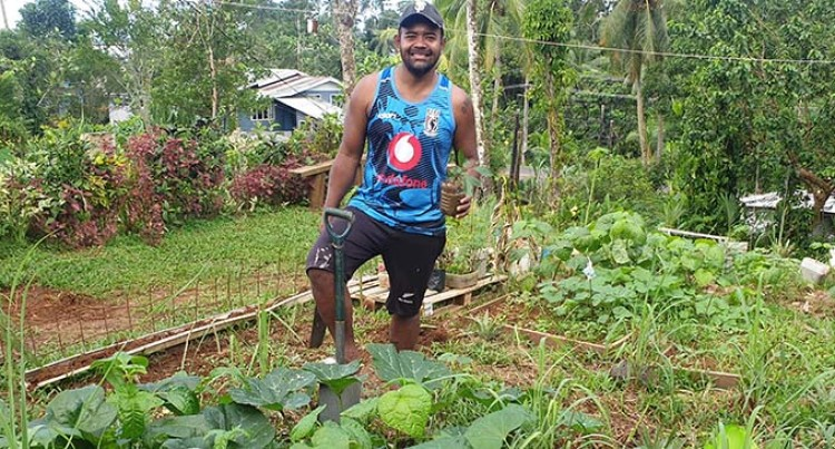 From Frontyard To Backyard Gardening, William Tabuya Paves The Way In Farming For Future