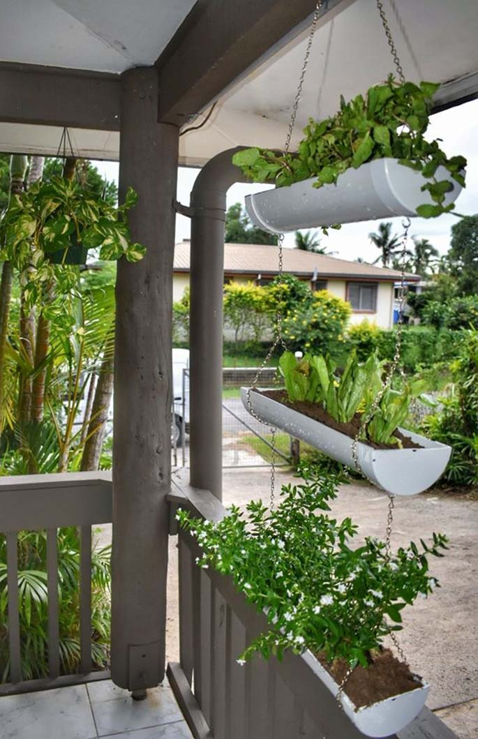 Piped Dreams creation, a suspended planter set.
