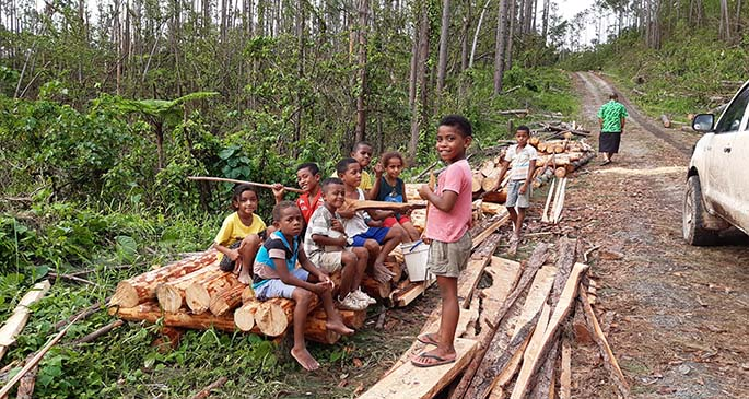 Children of Kadavu sit on the sawn pine logs that will be used to provide them shelter in the coming weeks. Photo: Ministry of Forestry