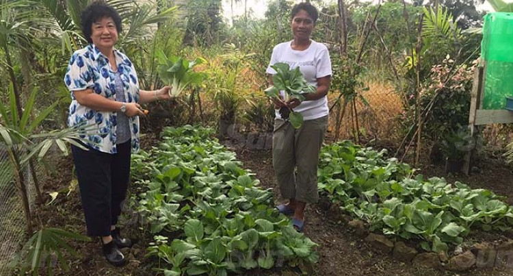 Jenny Seeto Following In Her Late Husband's Gardening Footstep